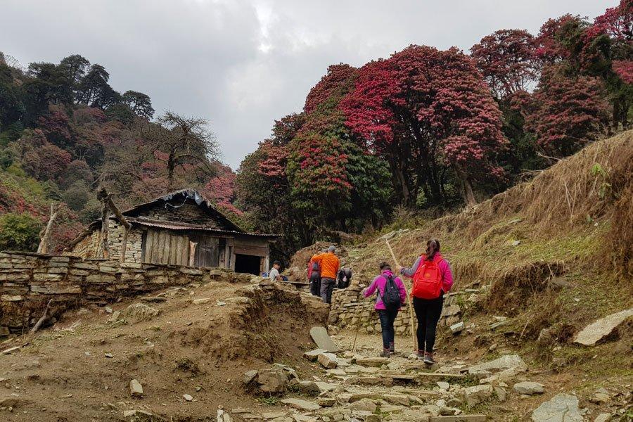 Annapurna Base Camp Trekking mit Yoga im Himalaya