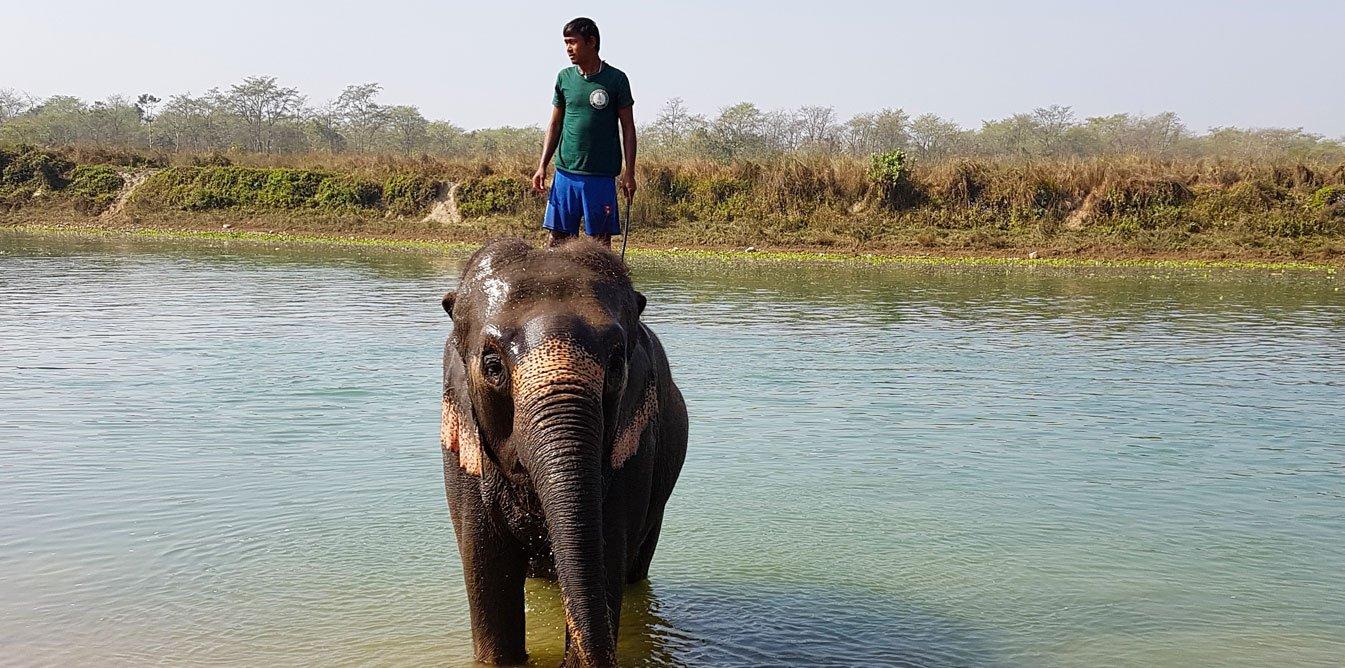 Yoga & Dschungelsafari & Trekking